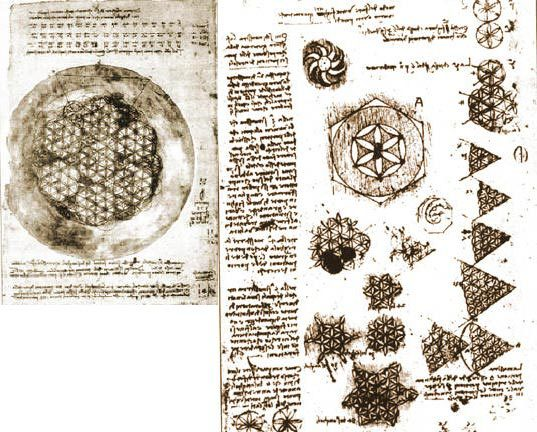 Da Vinci's flower of life drawings