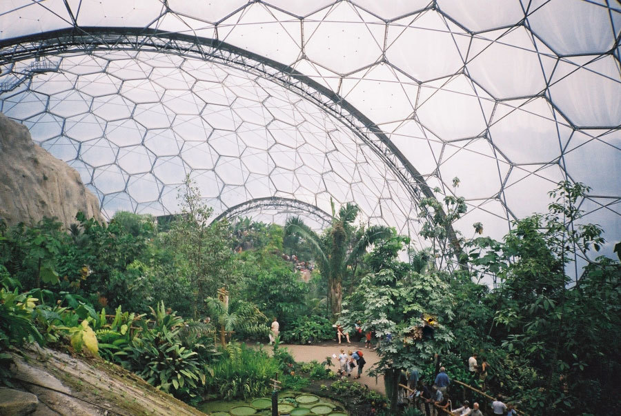 Tropical biome, Eden Project