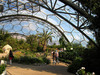 Hot, Dry Biodome, Eden Project